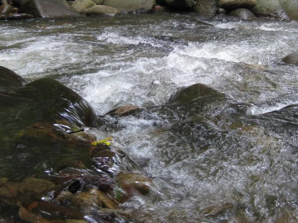 Sungai cetek yang mengalir deras!